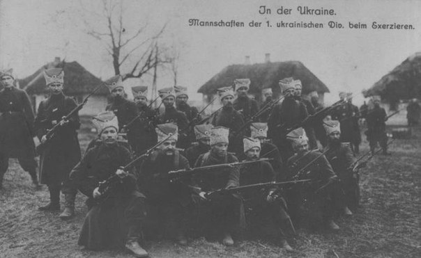 1-я Украинская «Cиния» Дивизия на учениях, Волынская губерня.Весна.1918 года