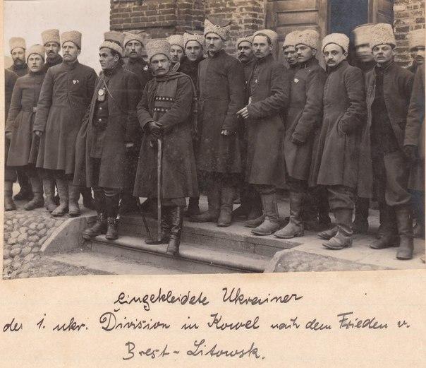 Козаки 1-ой Украинскойї «Синьожупанної» Дивизии. 1918.г