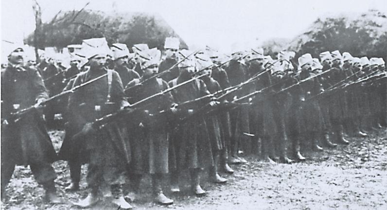 Синежупанной дивизия. 1918 1