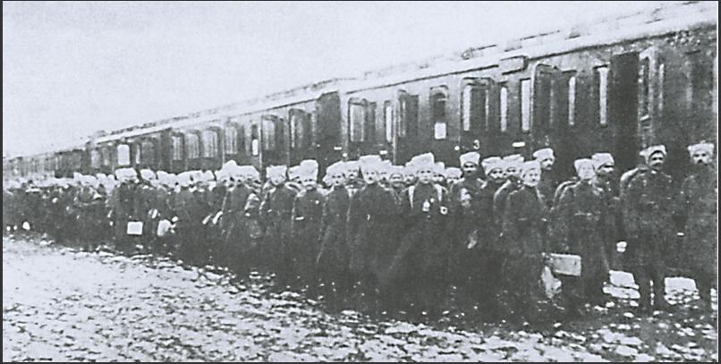 Синежупанной дивизия. 1918